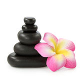 Group of hot stones and flower Stock Image