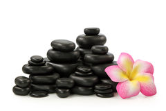 Group of hot stones and flower Royalty Free Stock Photos