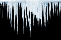 Group of icicles on black background Stock Photos