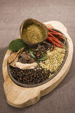 Group of Indian Spices Royalty Free Stock Photo