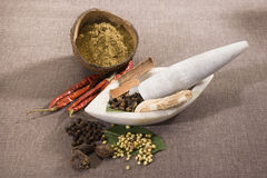 Group of Indian Spices Stock Photos