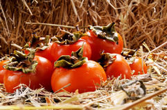 Group of Japanese persimmon fruits on the straw Stock Photos