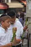 The group of Jewish boys in velvet skullcaps Stock Images
