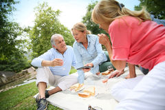 Group of joyful seniors having pic-nic outdoors Royalty Free Stock Photos