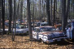 A group of junk cars in a forest off of Route 29 in Virginia Stock Image
