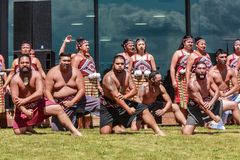 Maori men performing haka, New Zealand. A group of kapa haka, or traditional Maori dance performers. The men in the foreground are doing a haka, a form of royalty free stock image