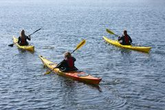 Group of kayaker paddling in kayak by the sea rowing, active water sport and leisure, kayaking Stock Image
