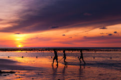 Group of kids explore the beach at the sunset time Stock Image