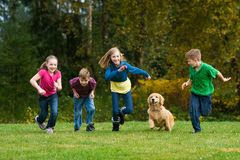 A group of kids racing on grass. A group of four kids and a Golden Retriever running fast during a race on green grass Stock Photography