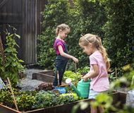 Group of kindergarten kids learning gardening outdoors Stock Images