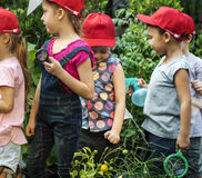Group of kindergarten kids learning gardening outdoors Royalty Free Stock Image