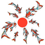 Group of koi fishes. Stylized hand drawn koi fishes swimming to the big red dot, vector objects isolated on white background Royalty Free Stock Image