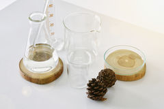 Group of laboratory glassware with natural ingredient. Stock Photos