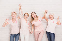 Group of ladies cheering. Group of smiling ladies with pink ribbons cheering and holding hands Royalty Free Stock Photography