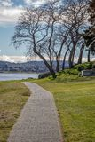 Winter trees along lakeside walkway in Taupo royalty free stock image