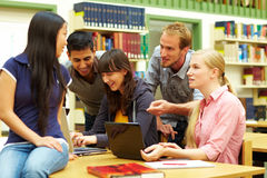 Group learning Royalty Free Stock Image
