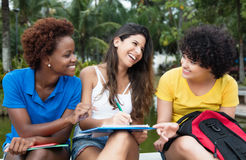 Group of learning multicultural female student. In a park outdoor in the summer Royalty Free Stock Image