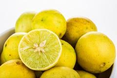 Group of lemon isolated on white background Stock Photos