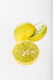 Group of lemon isolated on white background Royalty Free Stock Image