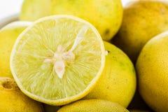 Group of lemon  on white background Stock Image