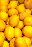 A group of lemons Stock Image