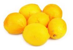 group lemons Στοκ εικόνες με δικαίωμα ελεύθερης χρήσης