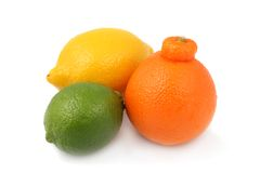 Group of lime, tangelo and lemon Stock Photography