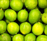 Group of limes Royalty Free Stock Photo