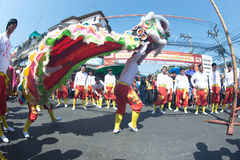 Group of Lion dancing performers during the celebration. royalty free stock image