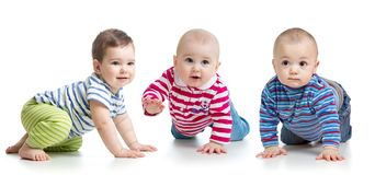 Group of little babies crawling on floor. Isolated on white. Group of cute babies crawling on floor. Isolated on white stock image