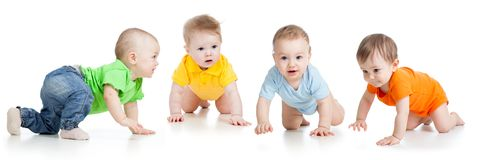 Group of little babies crawling on floor. Isolated on white. Group of cute babies crawling on floor. Isolated on white royalty free stock image