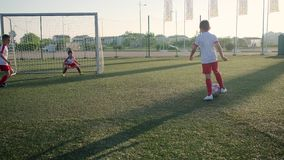 Group of little football players is playing soccer, scoring goal. On sport arena stock video