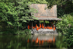Group of little Thai monks royalty free stock photos