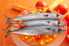 Group of mackerel fish on different vegetables Stock Images
