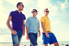 Group of male friends walking on the beach Royalty Free Stock Photo