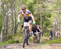 Group of male mountain bike cyclists in the forest Royalty Free Stock Photo