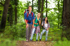 Group of man and women during hiking excursion in woods Royalty Free Stock Photos