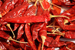 Group of many dried red spicy natural chilly collections royalty free stock photography