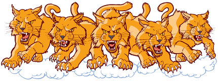 Group of Mean Wildcat Cartoon Mascots Charging Forward. Vector cartoon clip art illustration of a group of tough mean wildcat or bobcat mascots charging or vector illustration