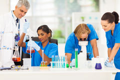 Group medical reseachers Royalty Free Stock Photo