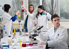 Group of medical students royalty free stock photography