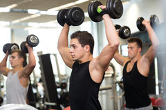 Group of men with dumbbells in gym Royalty Free Stock Photo