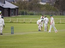 Group of men are enjoying playing cricket stock photos