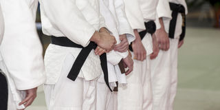 Group men judo Stock Images