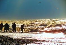 Men seeking amber in Baltic sea , Lithuania. Group men seeking amber in sea Stock Images