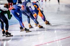 Group of men skating on ice sports arena. Warm-up before competitions in speed skating royalty free stock photos