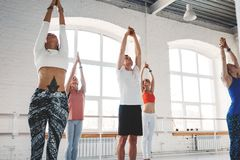 Group of men and women warming up and doing fitness training in class. Young active people are doing yoga together royalty free stock images
