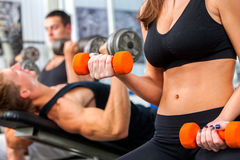 Group of men working his body at gym. Royalty Free Stock Photo