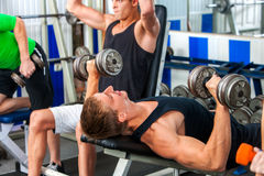 Group of men working his body at gym. Royalty Free Stock Image