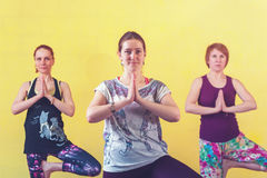 Group of middle aged women practicing yoga. Group of middle aged caucasian women practicing yoga in class. Three female adults working out, standing in Tree royalty free stock image